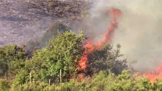 Incendio en Epuyen, mañana se podría circunscribir 02
