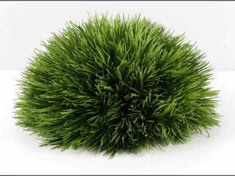 Artificial grass design samples artificial grass craft for Faux grass for crafts
