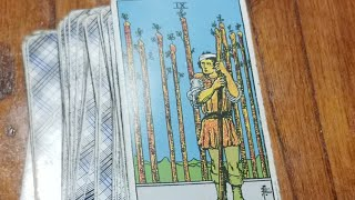 Live Tarot Card Reading With Collective