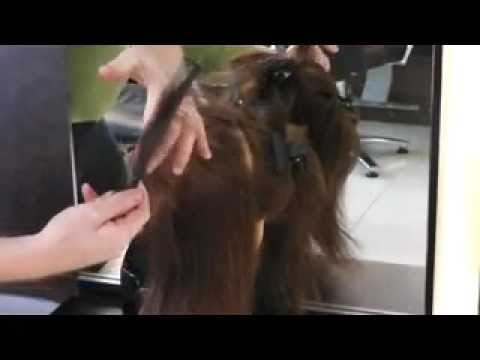 Online Hair School: learn to cut hair in weeks 1st lesson