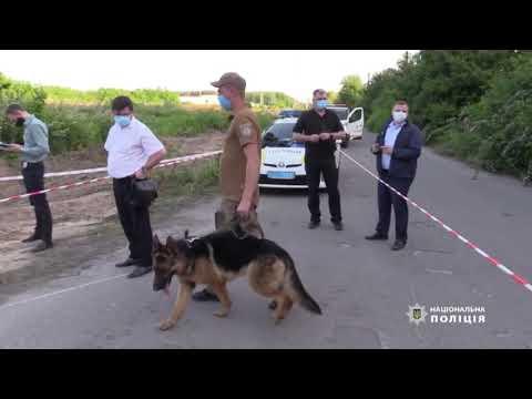 Страшна знахідка: у Києві на сміттєзвалищі знайшли труп людини у пакеті