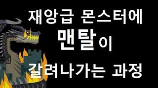 MHW:IB | 흑룡 첫 토벌까지 하이라이트