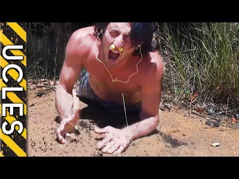 ANT ATTACK & ECHIDNA (GRAPHIC Content) with Andrew Ucles
