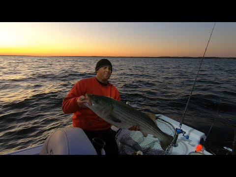 How To Drift Eels For BIG STRIPERS!