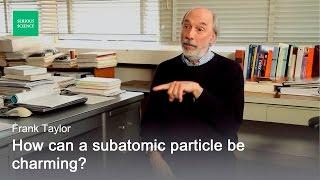 Electron Positron Annihilation - Frank Taylor