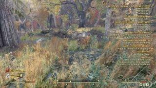 Fallout 76 trolling  with typmitMG, reassira , viirus17