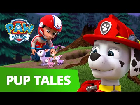 Bunny and Buddy Rescue with Marshall! 🐰 PAW Patrol Pup Tales Rescue Episode!