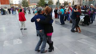Gambar cover 4k Chihuahua bailando en la plaza de armas