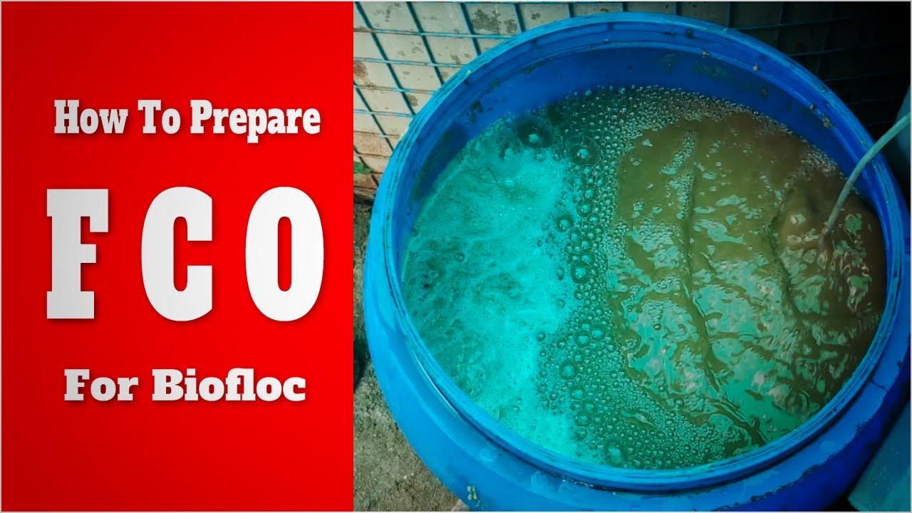 Download How to Prepare FCO for Biofloc Fish & Shrimp Farming