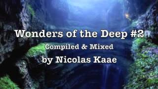 Wonders of the Deep #2
