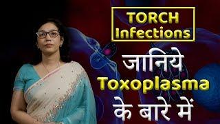 a toxoplazma megöli