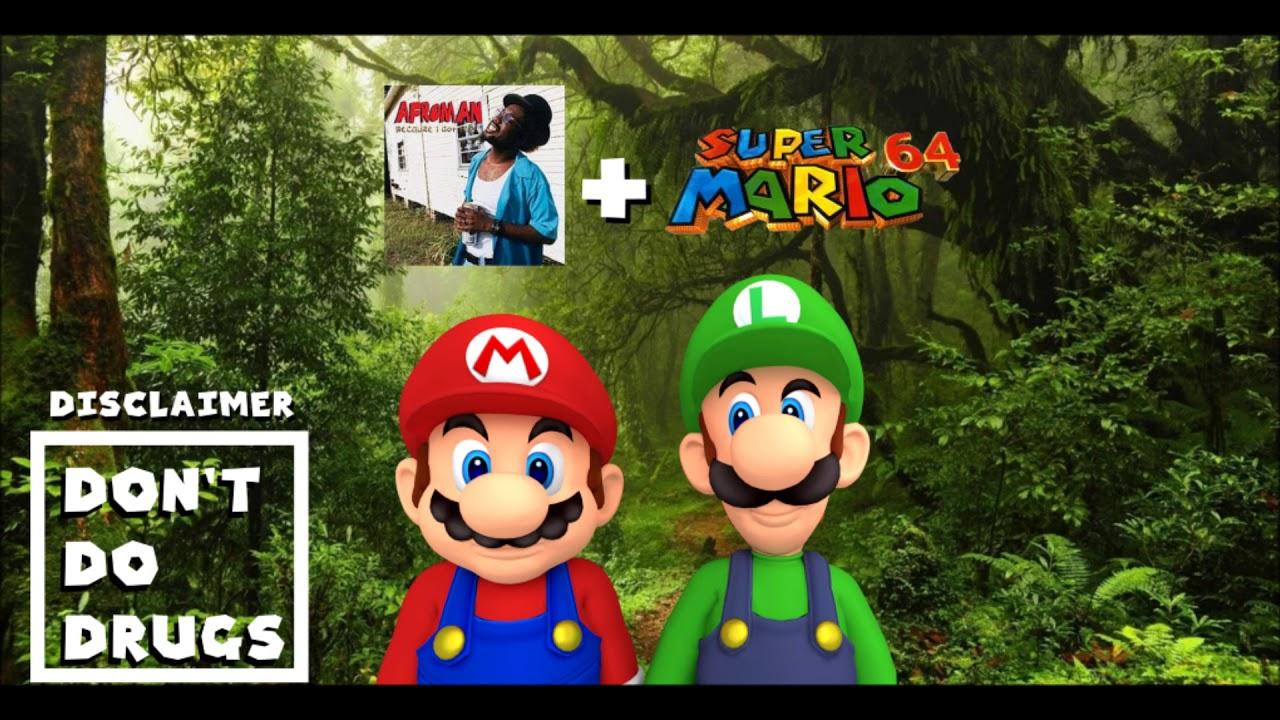 Afroman - Because I got High (Super Mario 64 Instruments)