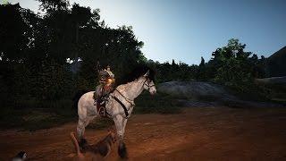 Black Desert Online : T8 Horse S: Instant Accel