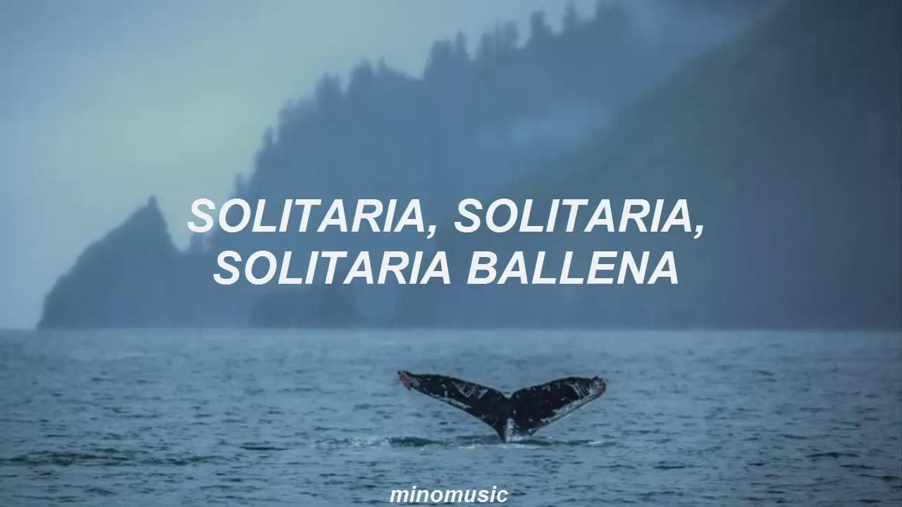 whalien 52 bts traducida al español youtube