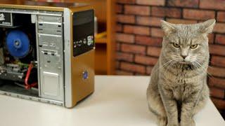 Золотая КИТАЙСКАЯ сборка БомжПК / Зарабатываем на хламе / Xeon W3550 (не) тащит