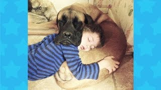 BEST FUNNY CUTE BABIES SLEEPING WITH DOGS | Funny Babies And Dogs Videos Compilation