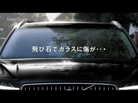 モータージャーナリスト竹岡圭がオススメするボルボ自動車保険