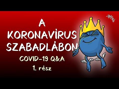 A KORONAVÍRUS szabadlábon! (COVID-19 Q&A 1. rész)