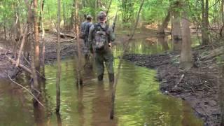 Georgia Wild Hog Hunt With Greg Campbell