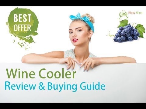 9 Best Wine Cooler Review and Buying Guide 2018 | for single and multiple bottles