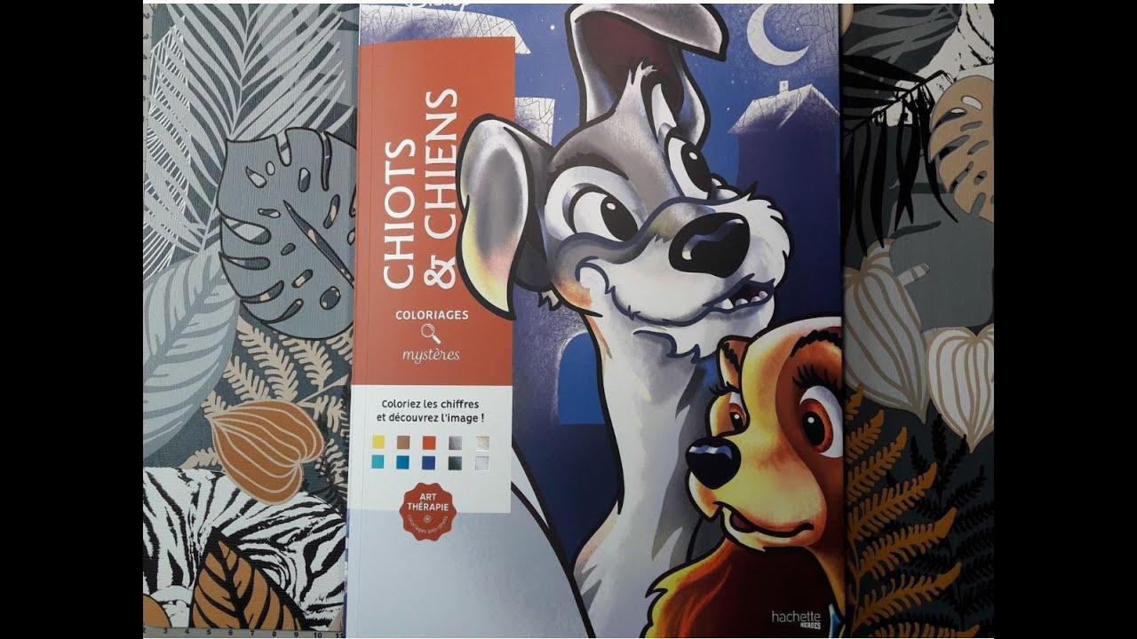 Coloriage mystère Livre Chiots et chiens - YouTube