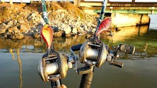 Big Spring Bass DESTROY Red Crankbaits!!!