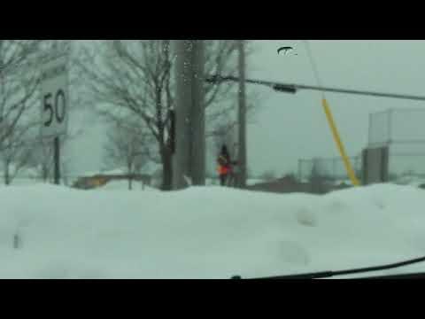 Cop on a Pole