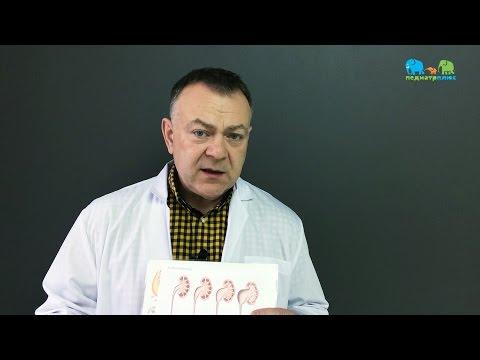 Педиатр Плюс - Гидронефроз