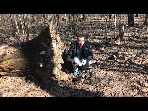 Находка под корнем 100-летнего дерева!