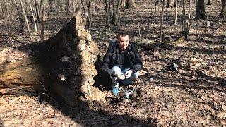 Находки под корнем 100-летнего дерева!)