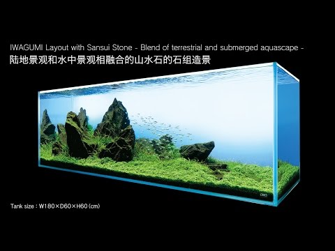 [ADAview] AJ229-180cm Tank Layout: IWAGUMI Layout with Sansui Stone(EN/CN Subs)