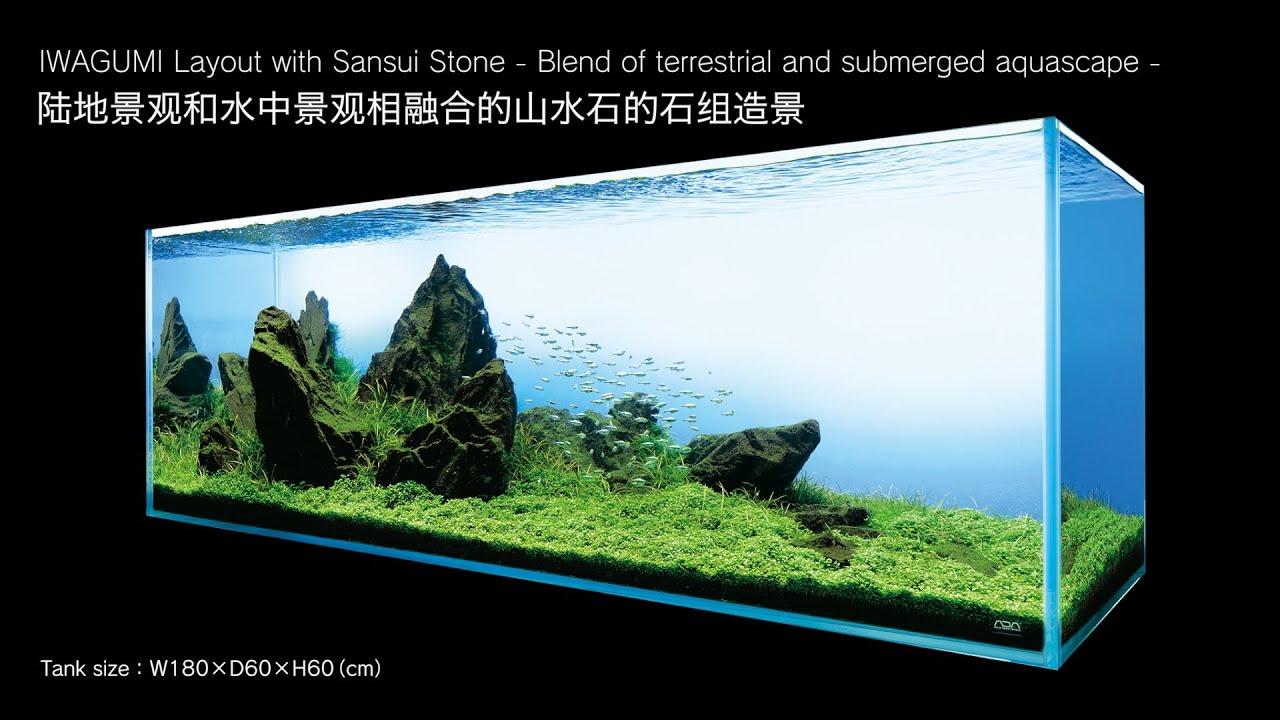 adaview aj229 180cm tank layout iwagumi layout with sansui stone