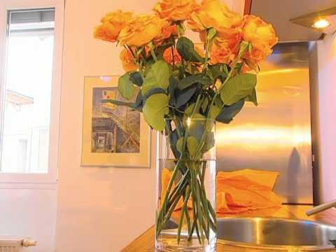 warum welken schnittblumen wie halten sie l nger youtube. Black Bedroom Furniture Sets. Home Design Ideas