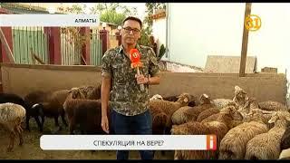 В дни Курбан-айта подскочили цены на жертвенных животных