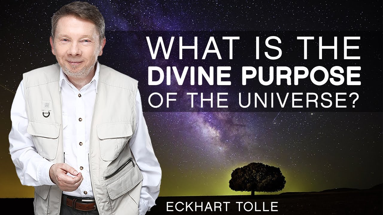 Image result for The Divine Purpose Of The Universe