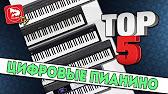 Цифровые пианино и органы, недорогие электропианино в нашем интернет -магазине музторг с доставкой по москве и санкт-петербургу, а также в.