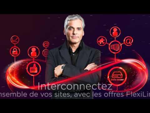 Monaco Telecom - Flexilink