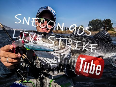Snecon 90S in action / Seabass live strike / BlueBlue fishing in Greece