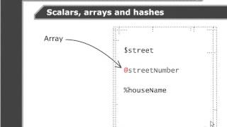 VTC Player   Perl Fundamentals, Scalars, hashes and arrays