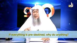 If everything is Pre-destined why do anything? - Sheikh Assim Al Hakeem