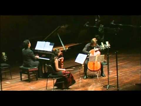 "Piazzolla : ""Four Seasons"" : A. Gurning (piano), A. Margulis (violin), A. Debrus (cello) / Lugano."