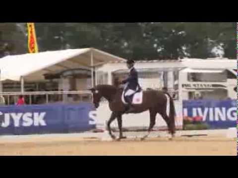 Pepo Puch - Cav Autrichien - Championnat Europe Herning