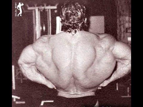 Тренировка мышц спины. Учимся тренировать СПИНУ.
