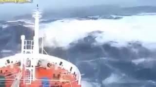 Berlayar tak bertepian (ELLA)