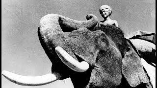 Маленький погонщик слонов, Британская Индия, 1937