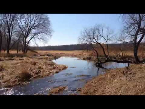 2015 April Fools in the Shiawassee National Wildlife Refuge