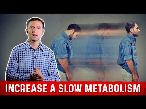 The 4 Ways to  Increase a Slow Metabolism