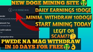 NEW DOGE MINING WEBSITE