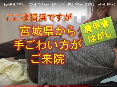 【肩甲骨はがし】宮城県から手ごわい方が【横浜菊名の整体院一宇~ITIU~】