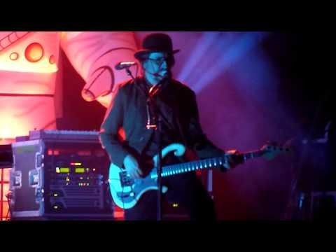 Primus - Wynona's Big Brown Beaver (Live In Montreal)